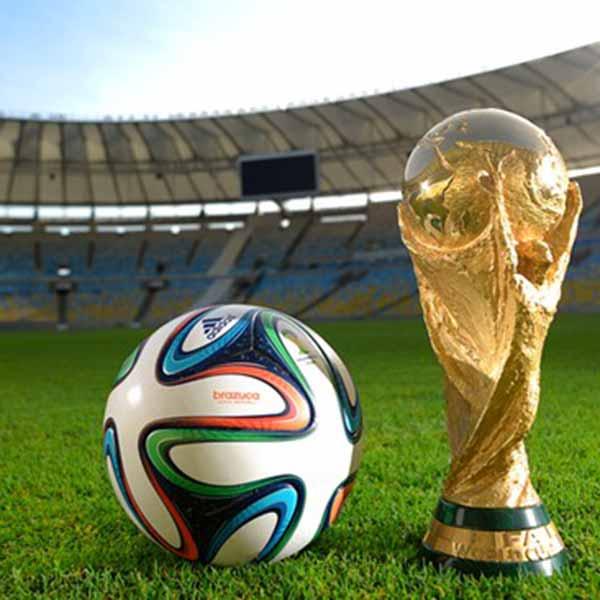 Welchen Platz erreicht Deutschland in der WM 2014?